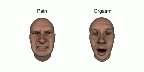 Images of orgasm faces